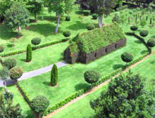 Tree Church -
