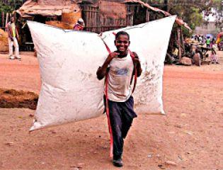 Гигантский мешок с биогазом (B)pack