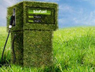 биотопливо - чистое топливо