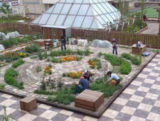 Огород на крыше ж/д станции: предложение для жителя мегаполиса